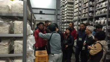 2016, 충남농업마이스터대학 표고버섯 국외현장실습 일본 연수