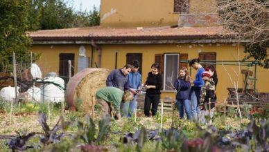 2019, 사회적농업 해외사례조사 및 교육운영
