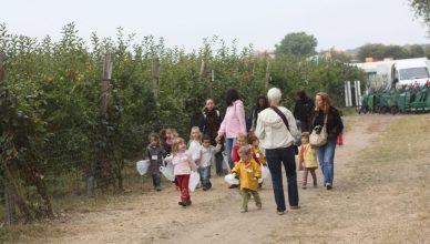 프랑스, 수확체험 농장들의 공동브랜드 '밀짚모자'