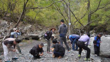일본 아마나시현, 소멸 위기 마을을 되살린 비결